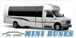 Mini Bus rental in Wichita, KS